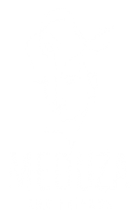 meduza_logo_white_standing